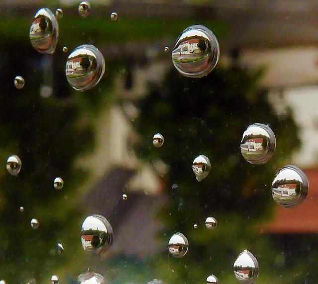 P1030578 Raindrops