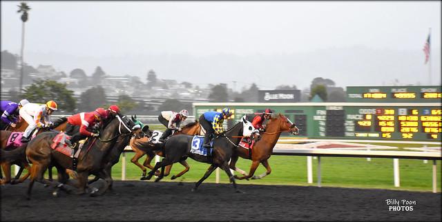 2019 Berkeley Handicap (Grade 3) - Golden Gate Fields