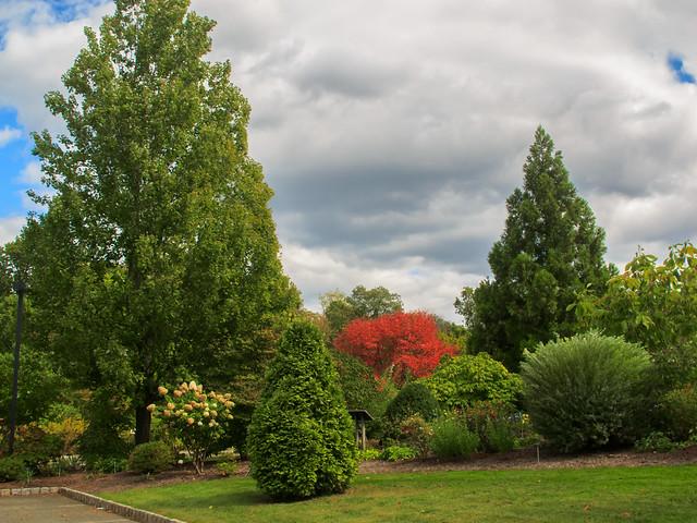 Frelinghuysen Arboretum_17825