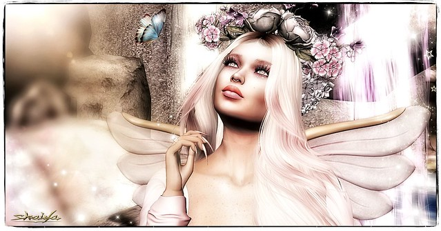 Capture the beauty of a fairy