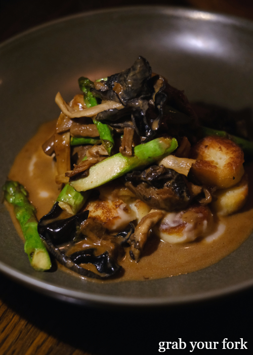 Gnocchi Parisienne with mushroom fricasse and asparagus at The Kittyhawk in Sydney