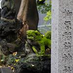柳原稲荷神社の狛犬さん 顔欠け
