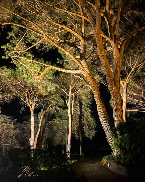 Golf Club Trees Oil