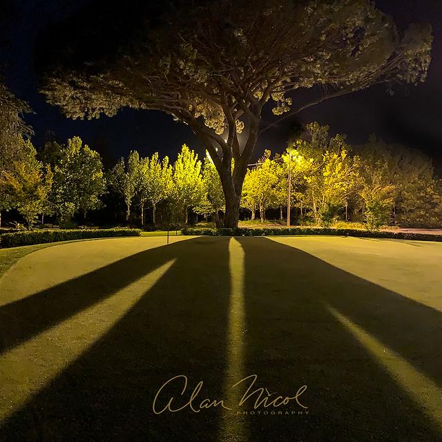 Golf Club Shadows
