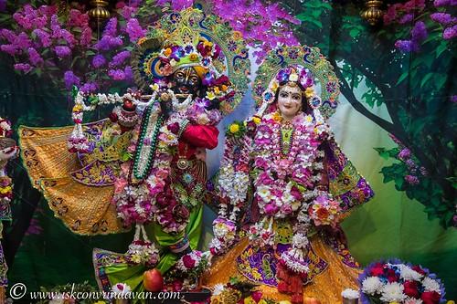 ISKCON Vrindavan Deity Darshan 01 Dec 2019