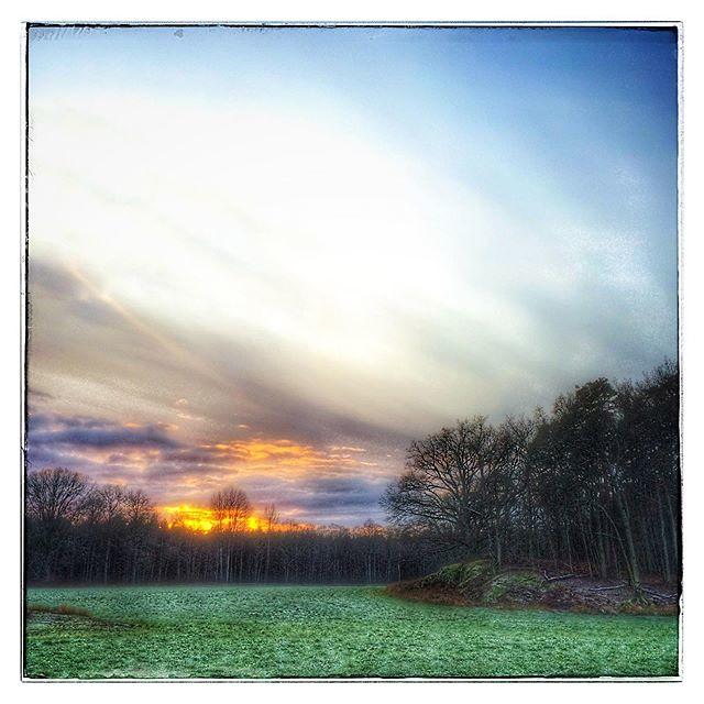 December evening in Elleholm. - _ _ _ #evening #december #decemberevening #elleholm #gottattleva. #advent