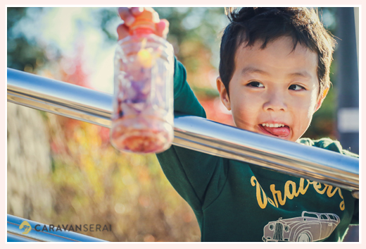 紅葉した公園 落ち葉でミックスジュースを作った男の子 ミササガパーク(愛知県刈谷市)