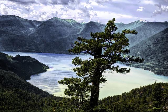 Lone Sentinel of Howe Sound