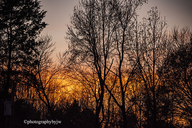 Golden Fall Sunset