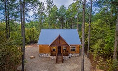 Harmony in the Pines Cabin