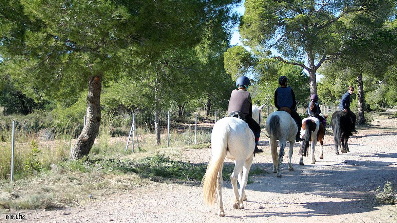 Porta Coeli área recreativa en Serra