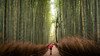 Bamboo Forest by Bastian.K