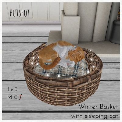 Hutspot - Winter Basket with sleeping cat