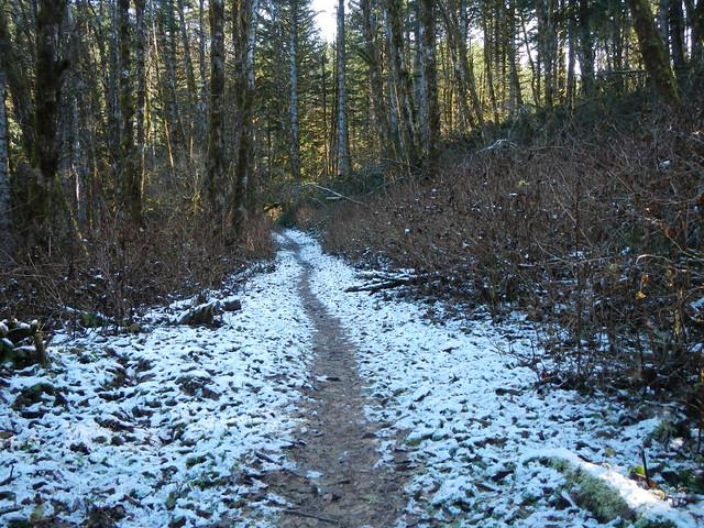 2019-11-29 step creek triple C 013