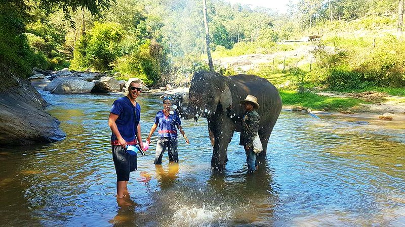 Trekker Elephant Home (Chiang Mai, Thailand) – Brochure, Tour Info, Price & Reviews