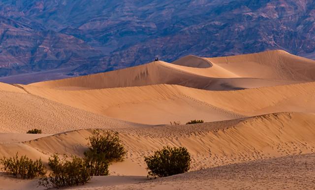 Sunrise on the Dunes 329 of 365 (Year 6)