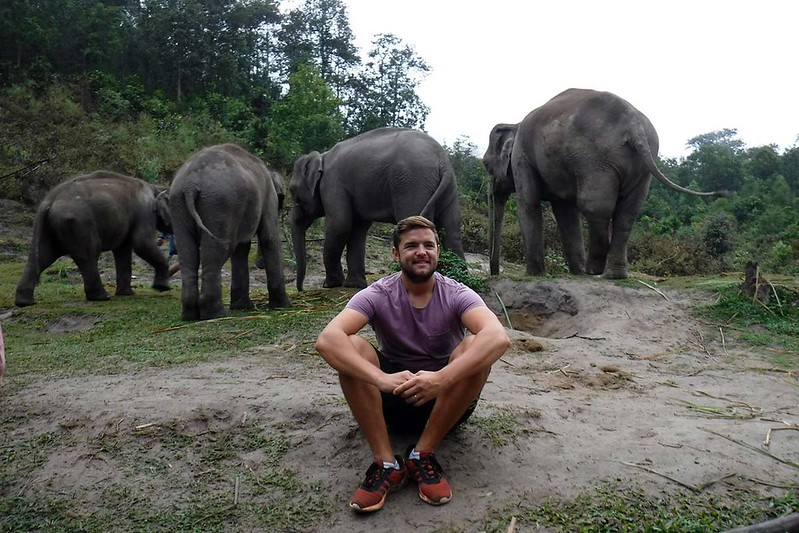 Chiang Mai Elephant Sanctuary (Chiang Mai, Thailand) – Brochure, Tour Info, Price & Reviews