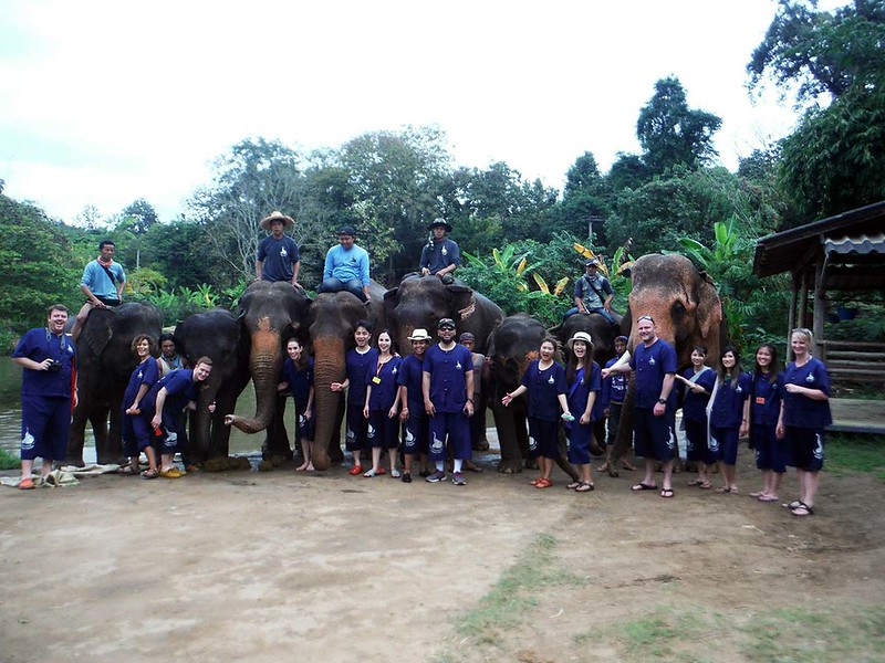 Baan Chang Elephant Park (Chiang Mai, Thailand) – Brochure, Tour Info, Price & Reviews