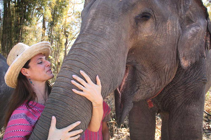 Mae Rim Elephant Home (Chiang Mai, Thailand) – Brochure, Tour Info, Price & Reviews