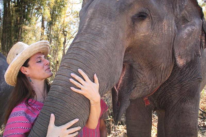 Maerim Elephant Sanctuary (Chiang Mai, Thailand) – Brochure, Tour Info, Price & Reviews