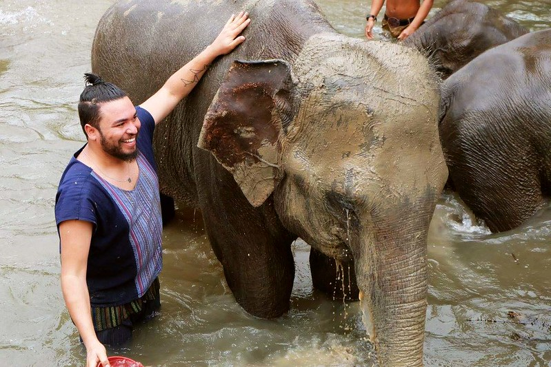 Elephant Family Care (Chiang Mai, Thailand) – Brochure, Tour Info, Price & Reviews