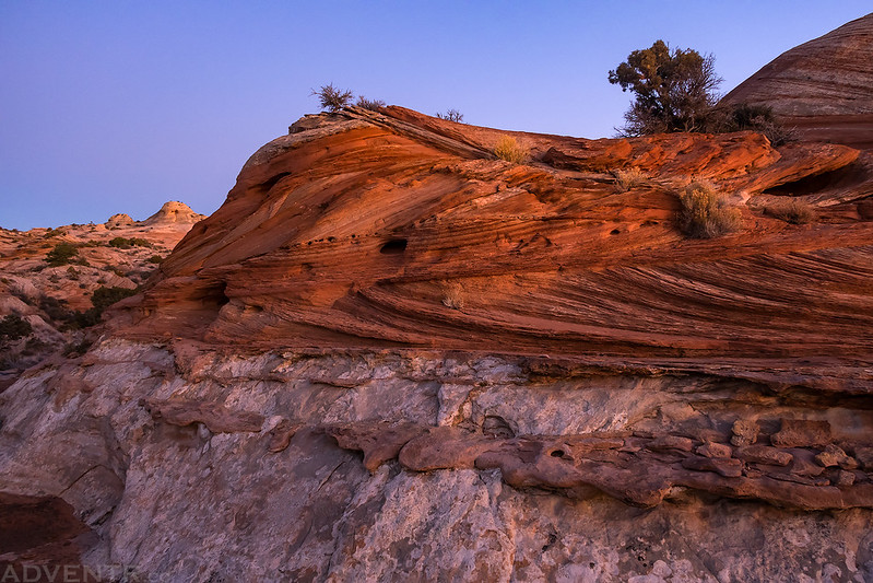 Lathrop Sandstone