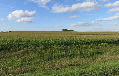 iowa ia landscapes butlercounty corn northamerica unitedstates us