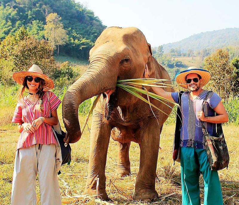 Happy Elephant Home (Chiang Mai, Thailand) – Brochure, Tour Info, Price & Reviews