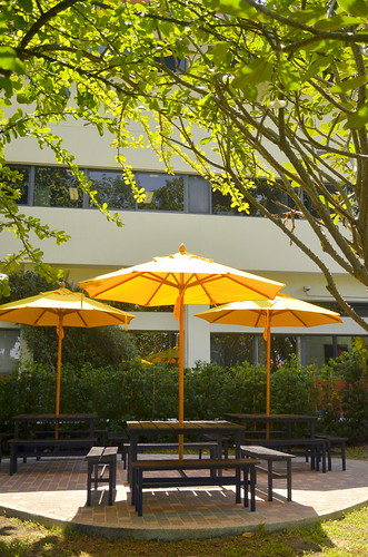 ISB Umbrellas