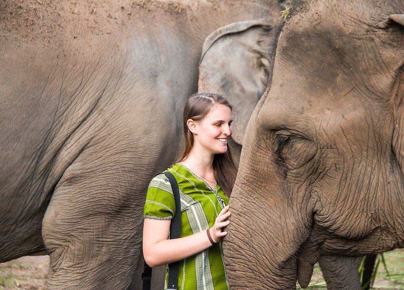 Elephant Mountain Park (Chiang Mai, Thailand) – Brochure, Tour Info, Price & Reviews