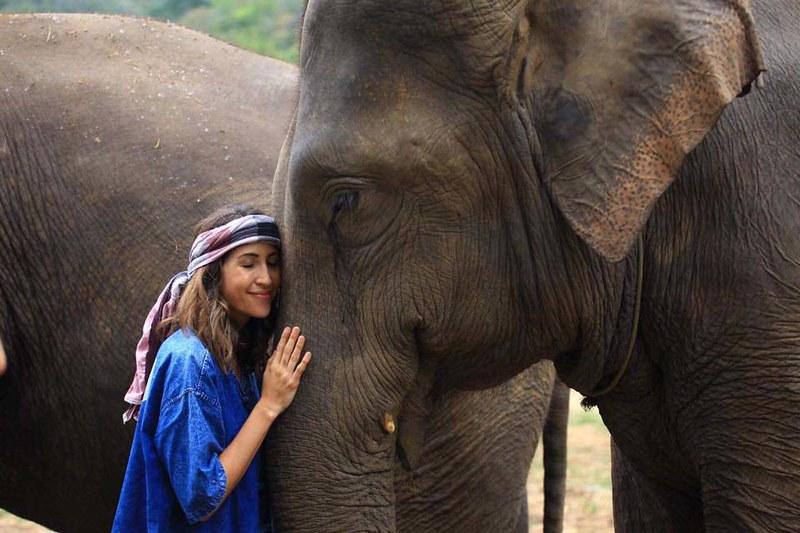 Elephant Carer Home (Chiang Mai, Thailand)