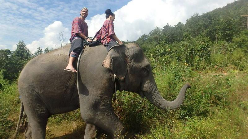 Yogi Mahout – Elephant Eco Tour (Chiang Mai, Thailand)