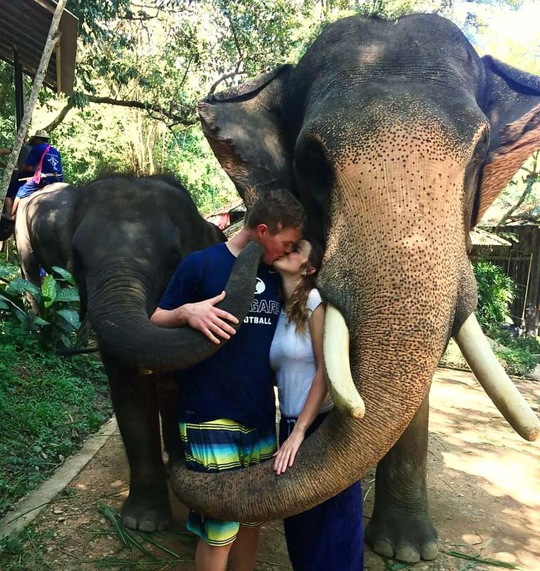 Maesa Elephant Camp (Chiang Mai, Thailand) – Brochure, Tour Info, Price & Reviews