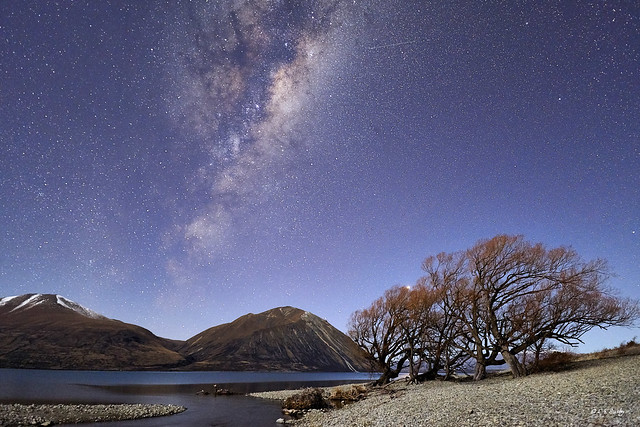 Lake Ohau moonlit Milky Way
