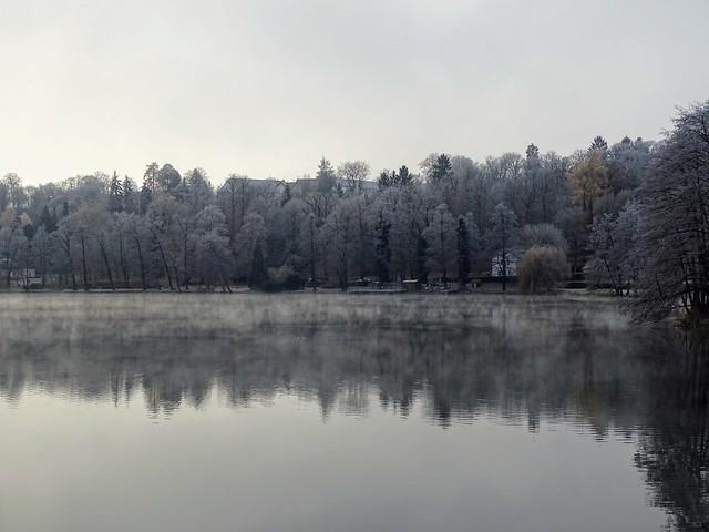 Nebel über dem See 💕