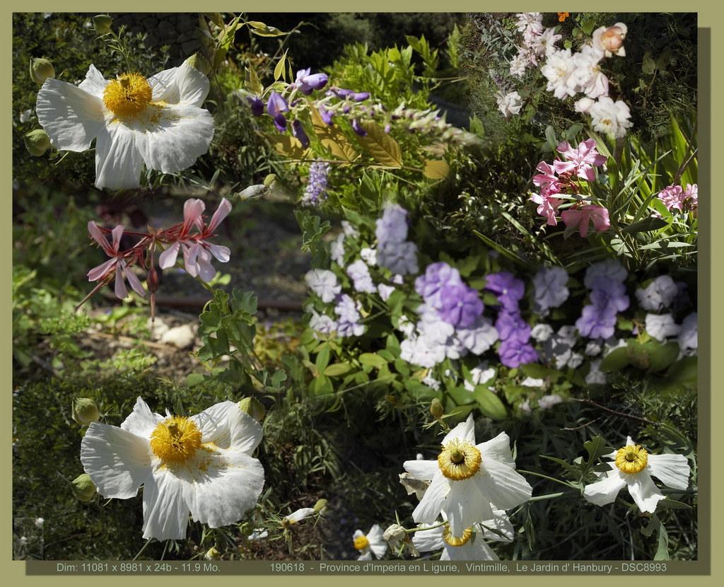 Vintimille_Le Jardin botanique Hanbury