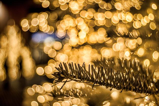 Tree IV - Photo # 2 of a Christmas Series