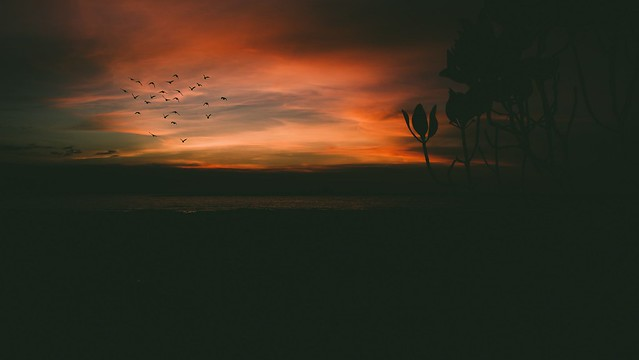 Sunset Mood #sunset