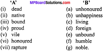 MP Board Class 11th Special English Vocabulary Exercises 1