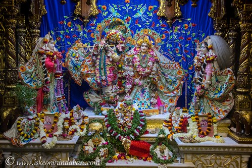 ISKCON Vrindavan Deity Darshan 02 Dec 2019