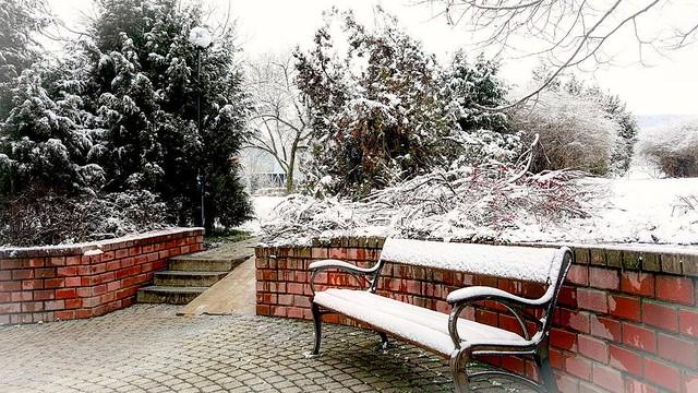 Winter view ⛄💕❄️
