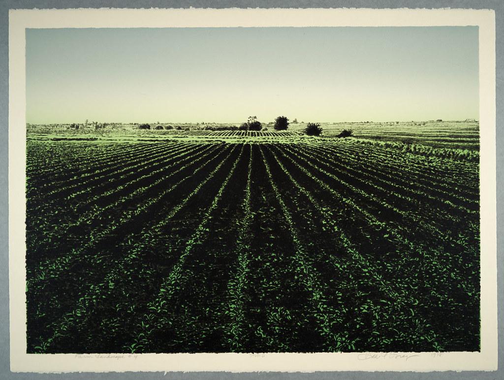 Farm Landscape #4