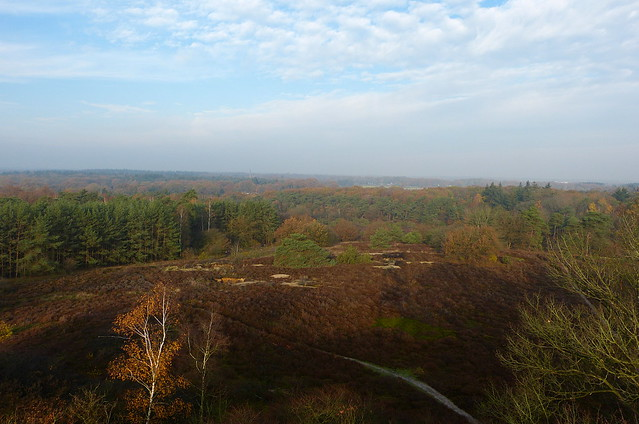 View from observation tower on Besthmenerberg near Ommen