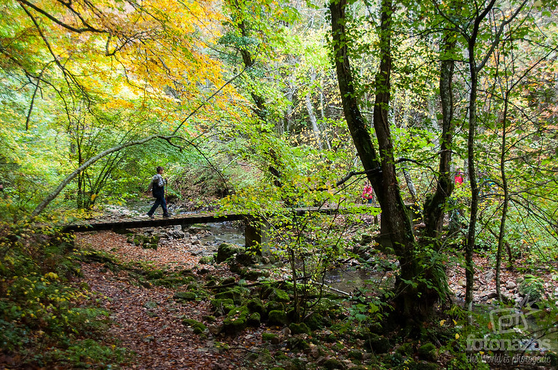 Ruta a la Cascada de las Pisas