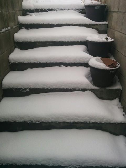 Perfect snow #toronto #dovercourtvillage #stairs #white #snow #winter