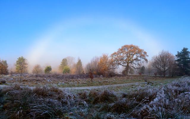 My first fogbow