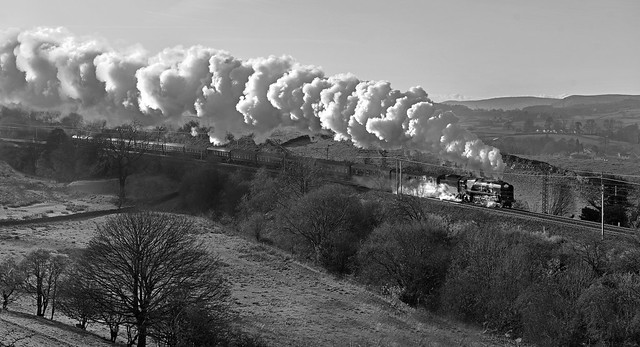 Steam in Monochrome