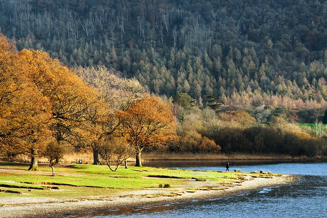 Late afternoon sunlight hits the shore of Derwentwater
