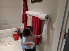 Toilet Paper Invention