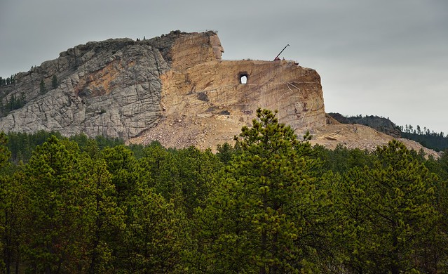 The Forest of the Black Hills Around the Crazy Horse Memorial